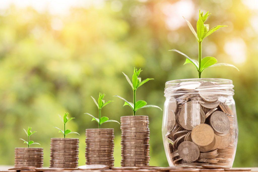 Die Menge an Geld wächst wie eine Pflanze